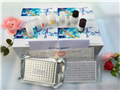5羟色胺(5-HT)ELISA试剂盒,大鼠5羟色胺(5-HT)ELISA试剂盒