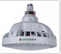 BAD93-高效节能免维护LED防爆泛光灯
