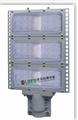 高效节能免维护LED防爆马路灯
