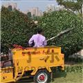 济宁东源园林绿化修剪车 多功能球形绿篱修剪机价格